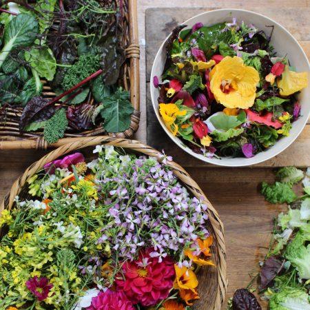 Verdes, Clorofila y Flores comestibles